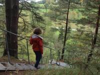 Chodníček na naučné stezce Sudslavický okruh